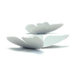 5 papillons argent