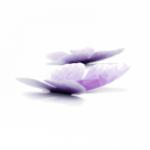 5 papillons violet