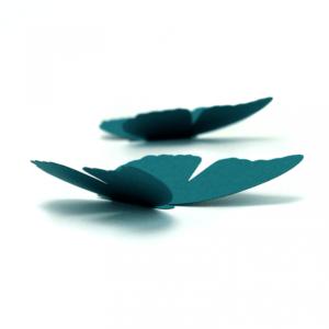 5 papillons bleu lagon