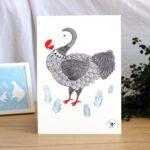 Affiche – Dodo