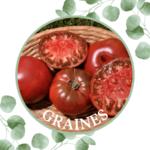 Tomate – Noire de crimée