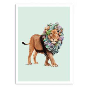 Lion succulente – Affiche 30 X 40