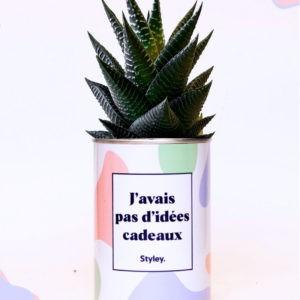 J'avais pas d'idées cadeaux – Plante détox