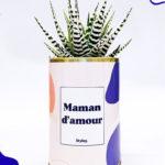 Maman d'amour – Plante détox
