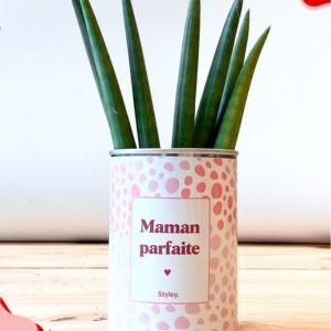 Maman parfaite – Plante détox