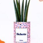 Bichette – Plante détox